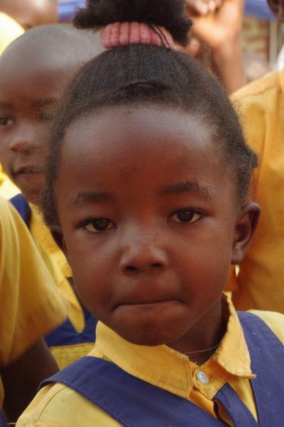 pate werden afrika