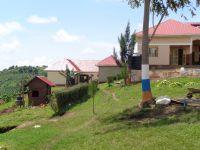 5_generatorhaus
